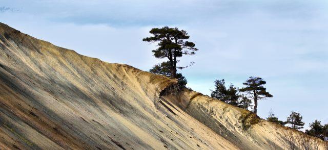 three major causes of soil erosion