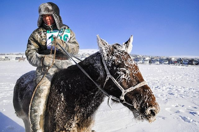 Mongolia-winter